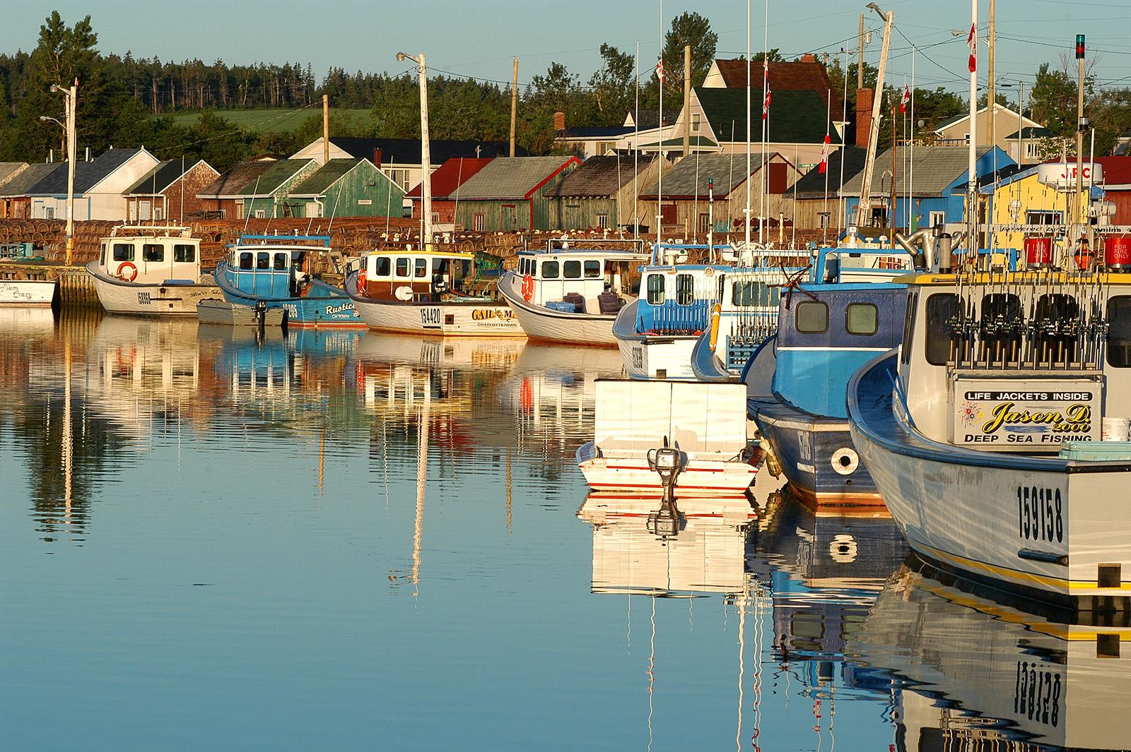 Prince Edward Island Website Design & Development